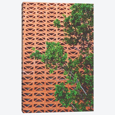 Southwestern Tree Canvas Print #BTY756} by Bethany Young Canvas Art