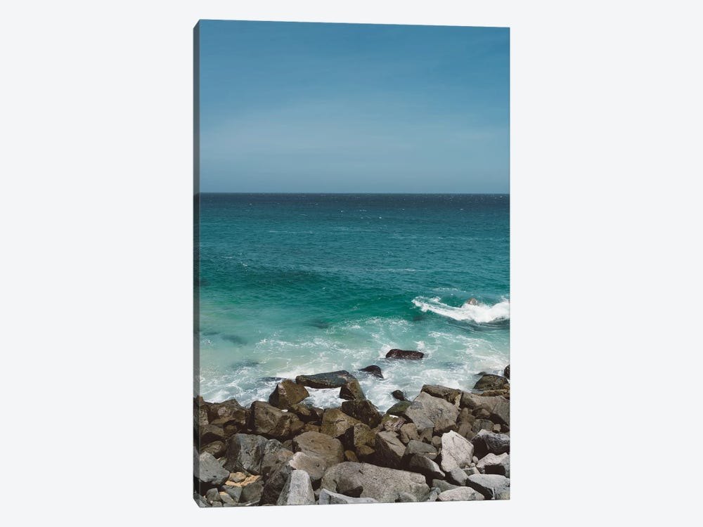 Pedregal, Mexico III by Bethany Young 1-piece Canvas Art