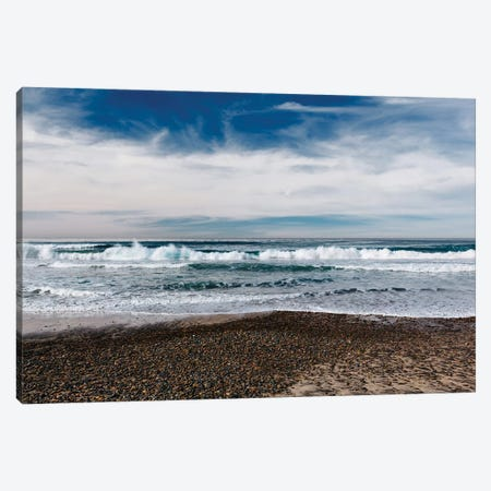 Torrey Pines San Diego V Canvas Print #BTY891} by Bethany Young Canvas Wall Art