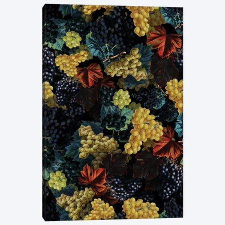Delicious Harvest Canvas Print #BUR106} by Burcu Korkmazyurek Canvas Artwork