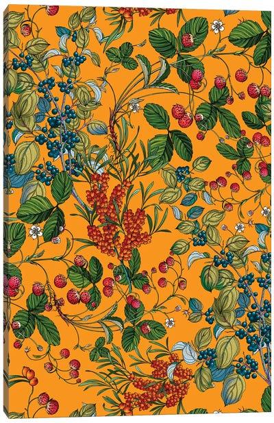 Vintage Garden VII Canvas Art Print