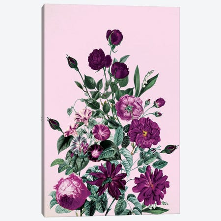 Big Flower V Canvas Print #BUR175} by Burcu Korkmazyurek Canvas Print