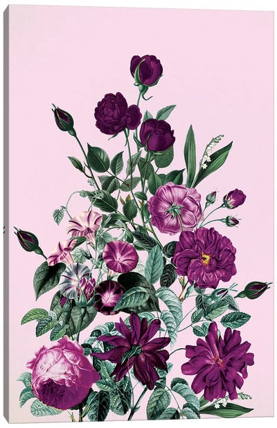 Big Flower V Canvas Art Print