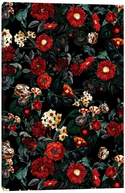 Night Garden XXXVIII Canvas Art Print