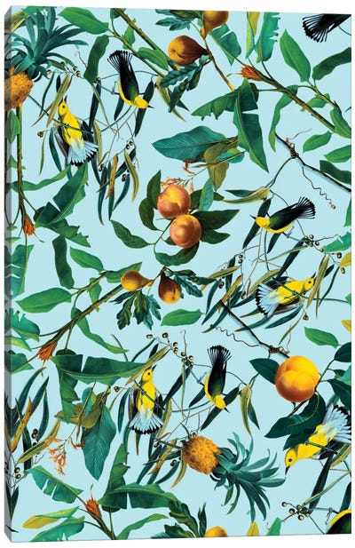 Fruit And Birds Pattern Canvas Art Print