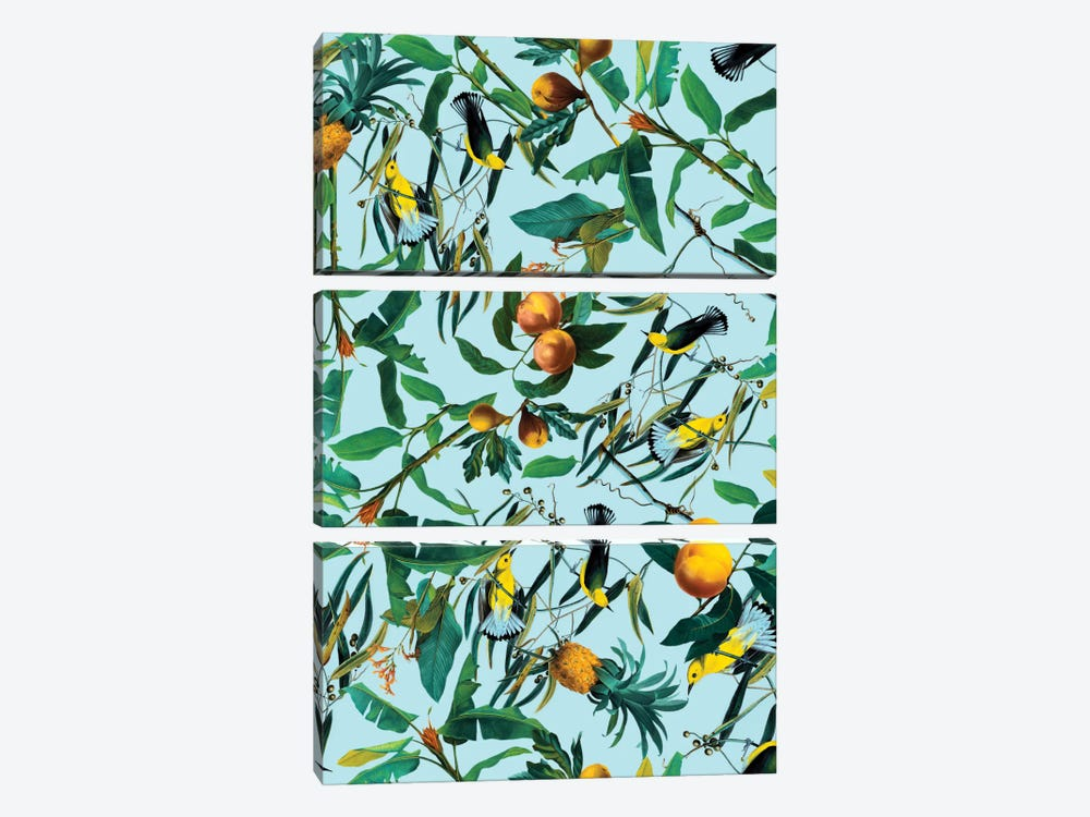 Fruit And Birds Pattern 3-piece Canvas Art