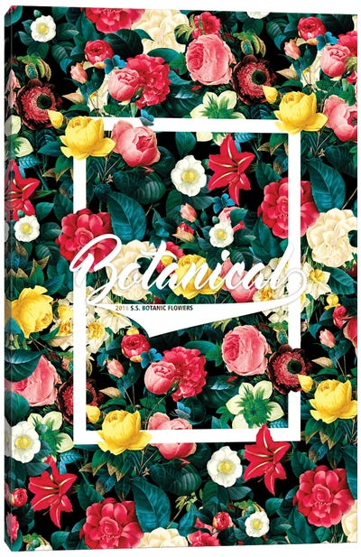 Botanical Canvas Print #BUR2