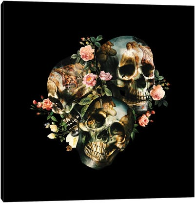 Skull & Venus Canvas Art Print