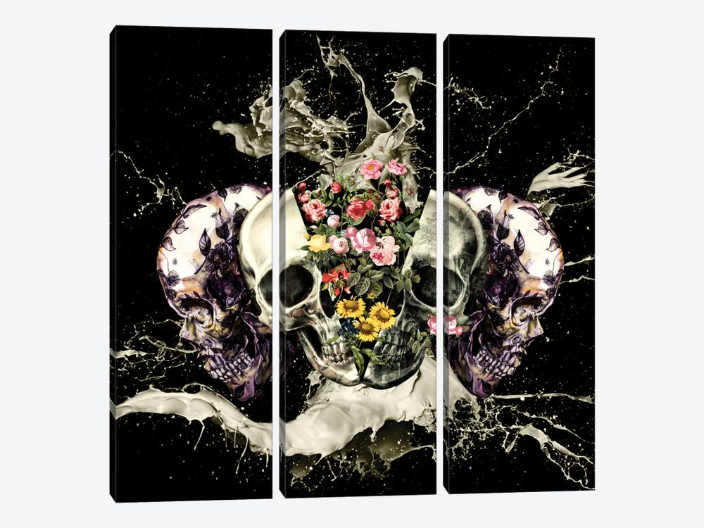 Skull II by Burcu Korkmazyurek 3-piece Canvas Wall Art