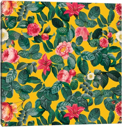 Summer Botanical II Canvas Print #BUR39
