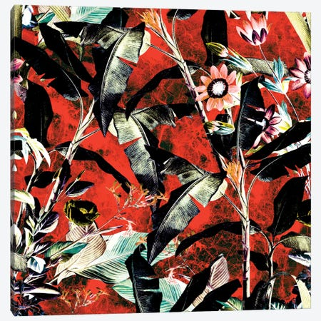 Tropical Jungle II Canvas Print #BUR43} by Burcu Korkmazyurek Canvas Art