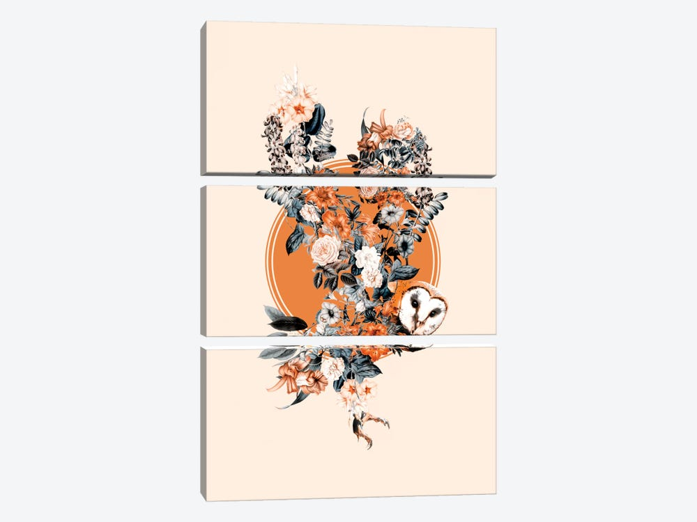 Floral Owl by Burcu Korkmazyurek 3-piece Canvas Art Print
