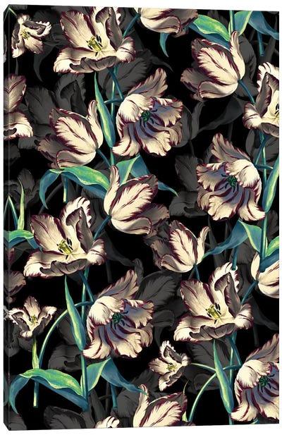 Night Forest XIII Canvas Print #BUR66