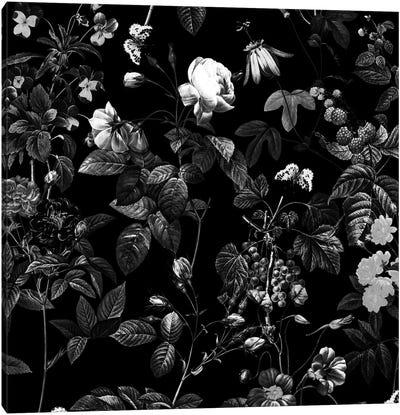 Siyah Canvas Art Print