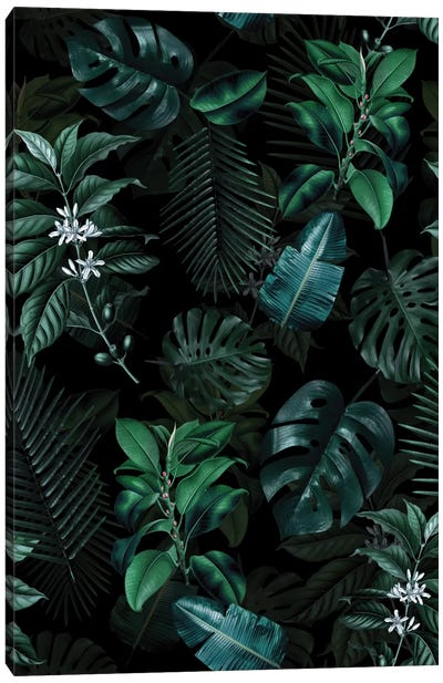 Tropical Garden II Canvas Art Print