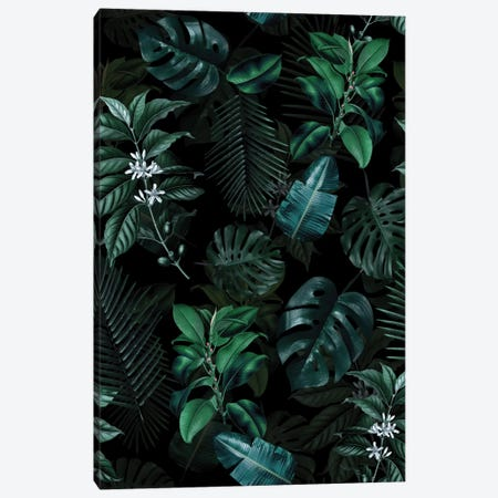 Tropical Garden II Canvas Print #BUR71} by Burcu Korkmazyurek Canvas Art Print