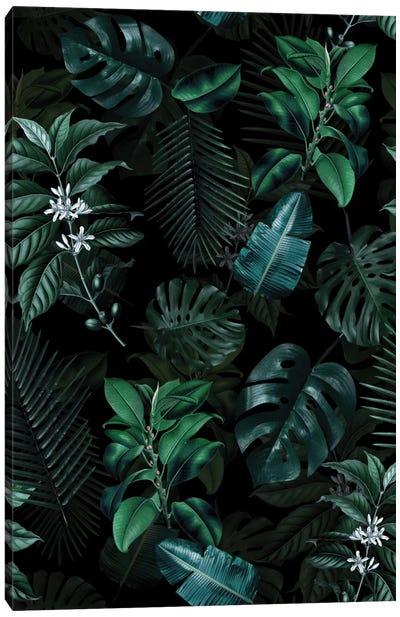 Tropical Garden II Canvas Print #BUR71