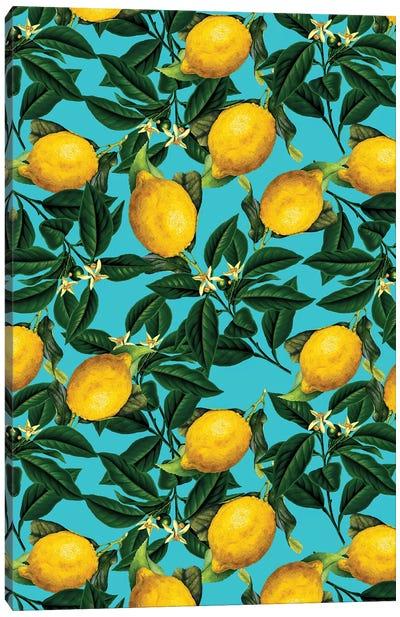 Lemon And Leaf Canvas Art Print