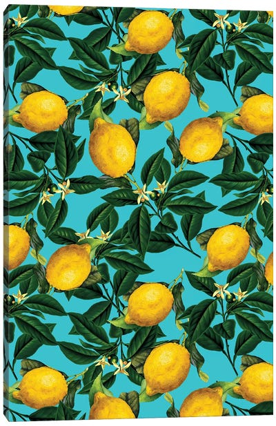 Lemon And Leaf Canvas Art Print
