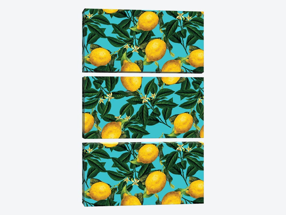 Lemon And Leaf by Burcu Korkmazyurek 3-piece Canvas Artwork