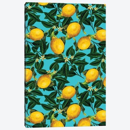 Lemon And Leaf Canvas Print #BUR93} by Burcu Korkmazyurek Art Print