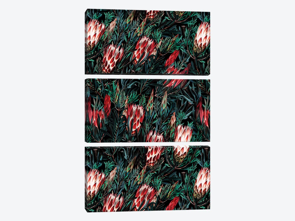Protea Floral Night Pattern 3-piece Canvas Wall Art