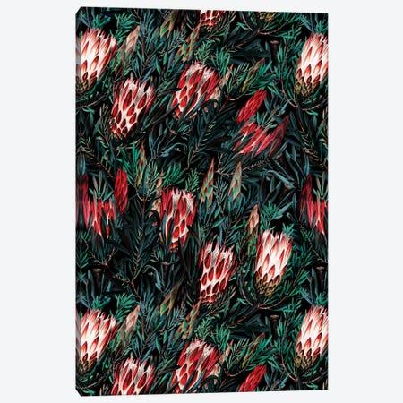 Protea Floral Night Pattern Canvas Print #BUR97} by Burcu Korkmazyurek Canvas Wall Art