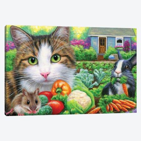 Verns Veggie Garden Canvas Print #BVT335} by Bridget Voth Canvas Art Print