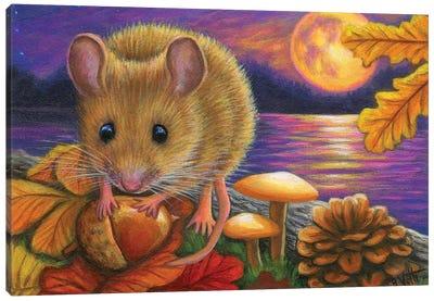 Acorn Moon Canvas Art Print