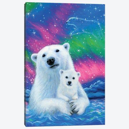 Arctic Lights Canvas Print #BVT53} by Bridget Voth Art Print