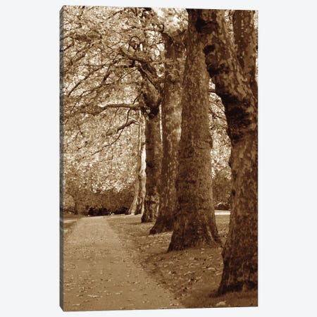 Autumn Stroll I Canvas Print #BWA10} by Boyce Watt Art Print