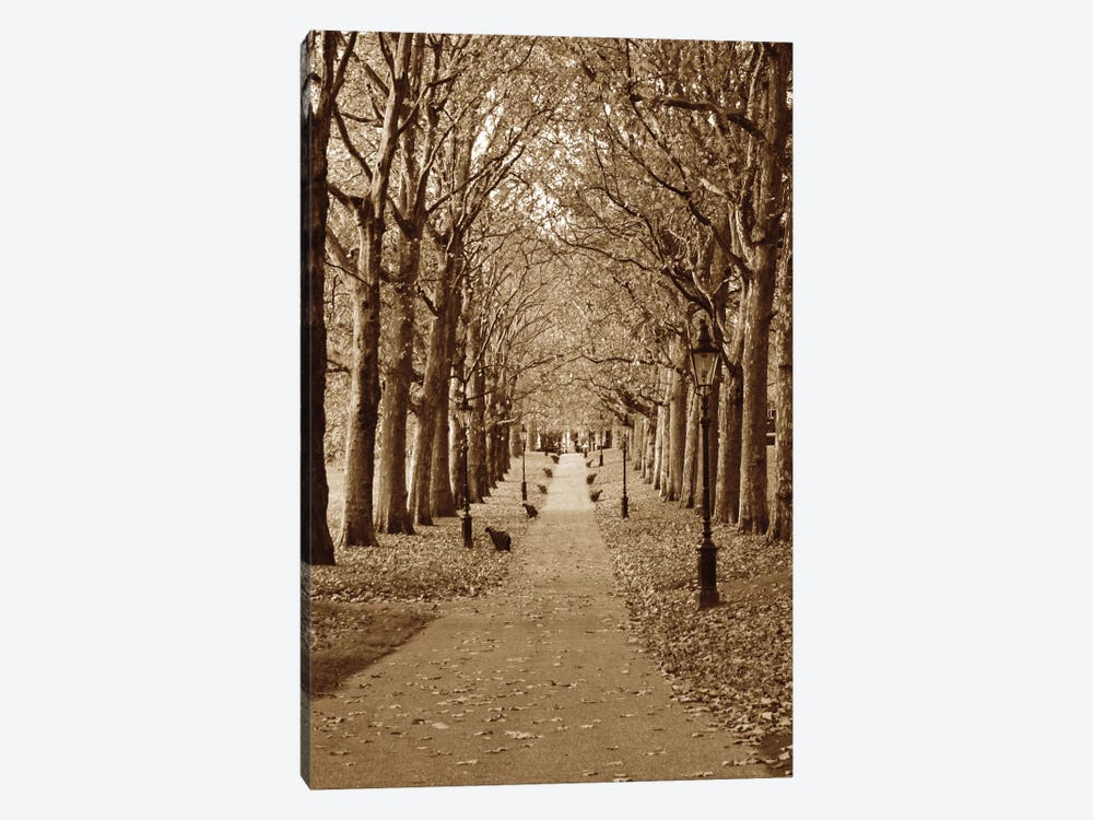 Autumn Stroll II 1-piece Canvas Art Print