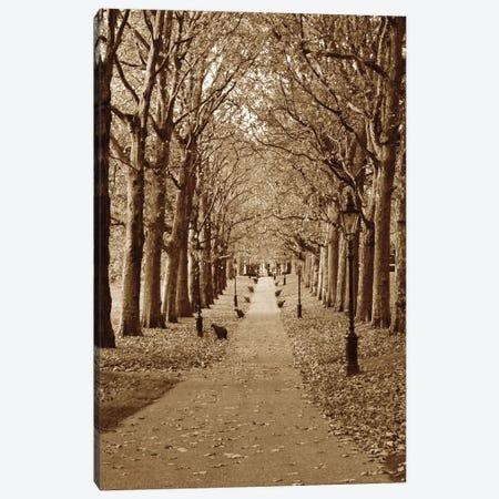 Autumn Stroll II Canvas Print #BWA11} by Boyce Watt Art Print