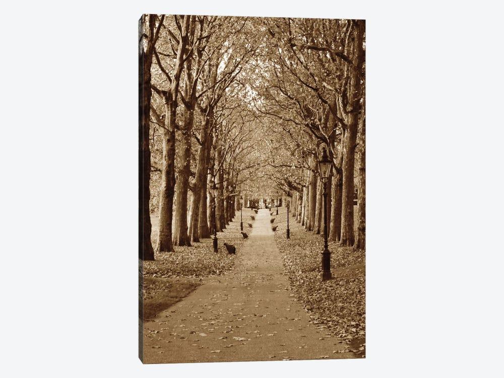 Autumn Stroll II by Boyce Watt 1-piece Canvas Art Print