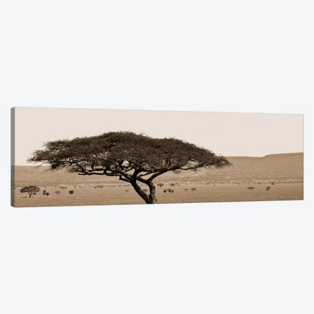 Serengeti Horizons I Canvas Print #BWA35} by Boyce Watt Canvas Wall Art