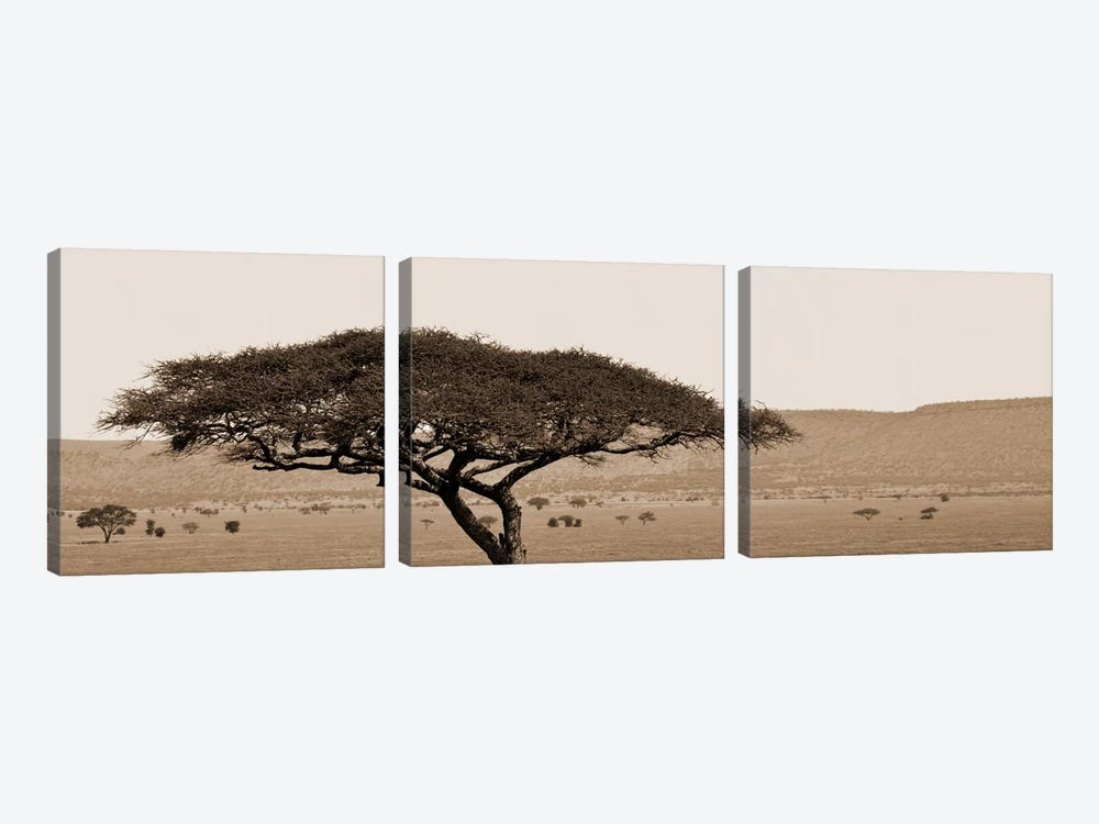 Serengeti Horizons I by Boyce Watt 3-piece Art Print