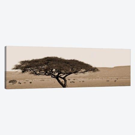 Serengeti Horizons I Canvas Print #BWA35} by Boyce Watt Canvas Wall Art