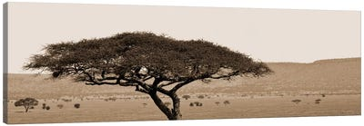 Serengeti Horizons I Canvas Art Print