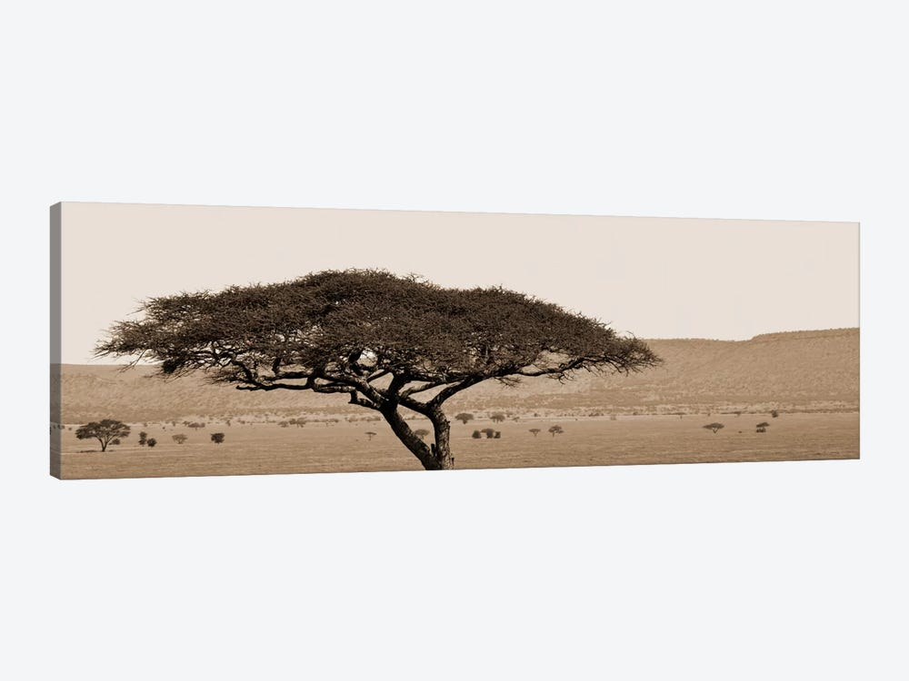 Serengeti Horizons I by Boyce Watt 1-piece Canvas Art Print