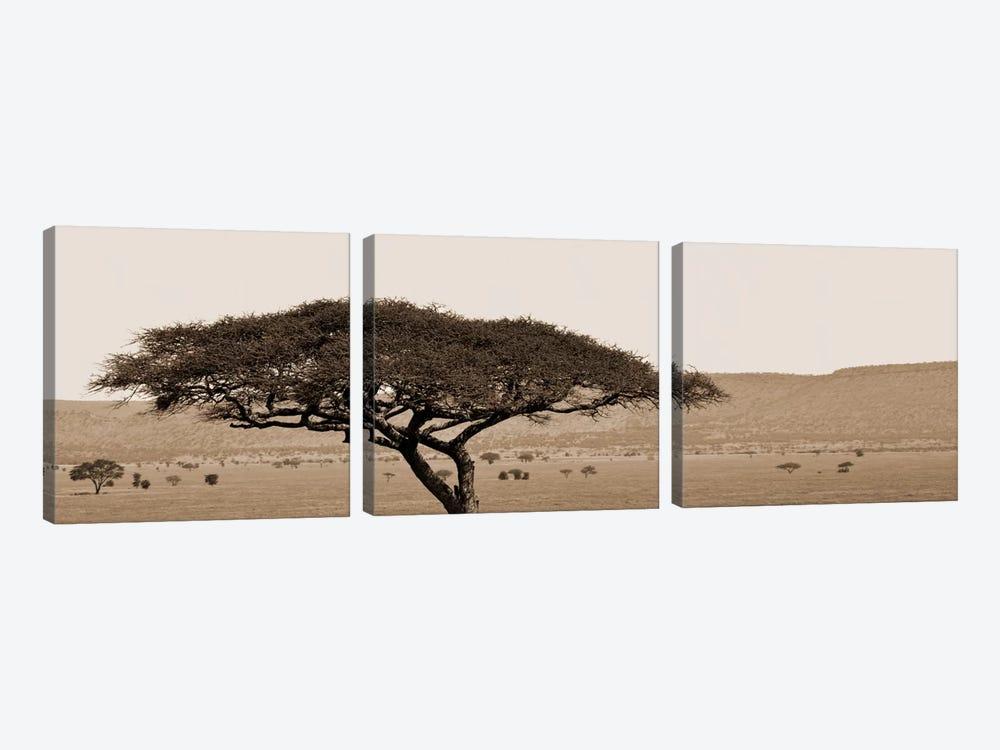 Serengeti Horizons I by Boyce Watt 3-piece Art Print