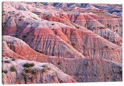 Dusk Colors Of The Badlands Canvas Art Print