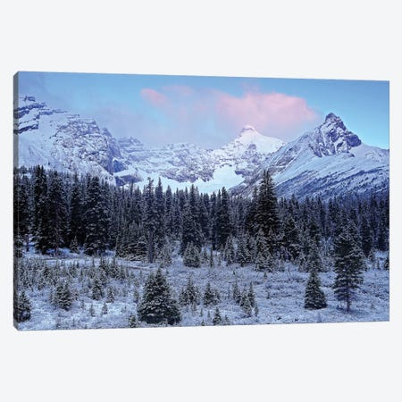 Early Mountain Light Canvas Print #BWF107} by Brian Wolf Canvas Artwork