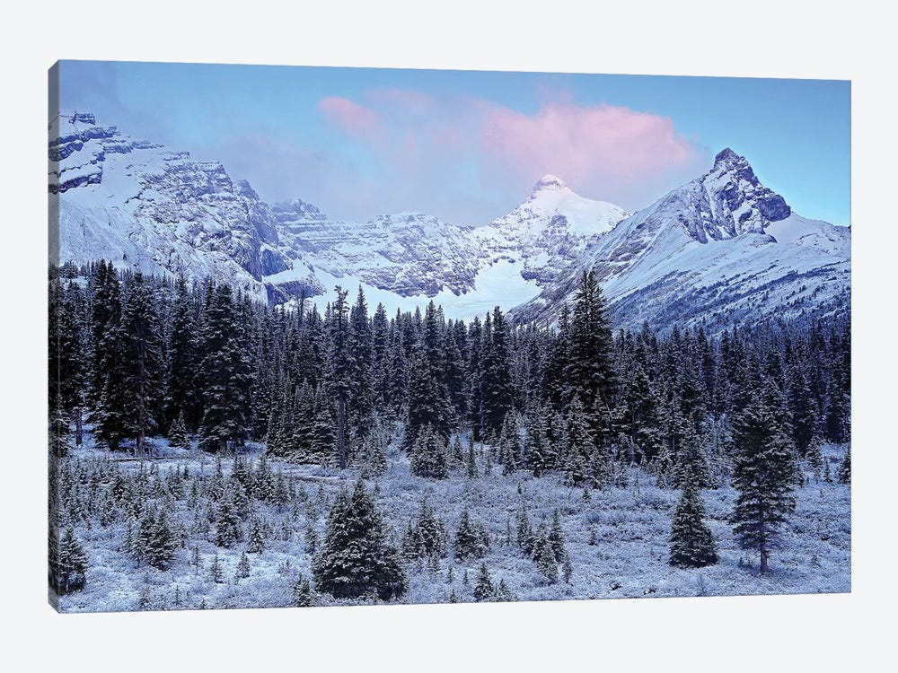 Early Mountain Light by Brian Wolf 1-piece Canvas Print