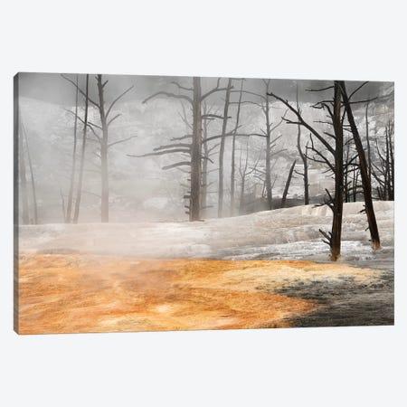 Angel Terrace Canvas Print #BWF10} by Brian Wolf Canvas Art