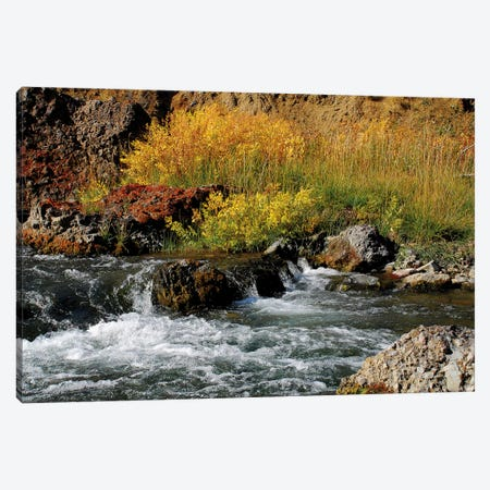Gardner River Canvas Print #BWF138} by Brian Wolf Canvas Artwork