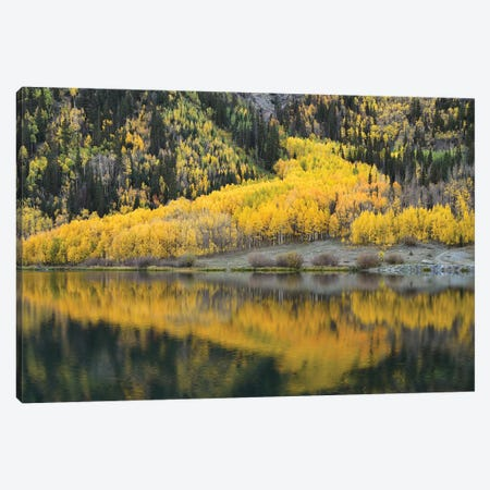 Aspen Reflections In Crystal Lake Canvas Print #BWF17} by Brian Wolf Canvas Art Print