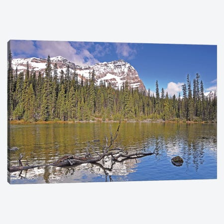 Little Lake O'Hara Canvas Print #BWF185} by Brian Wolf Canvas Art