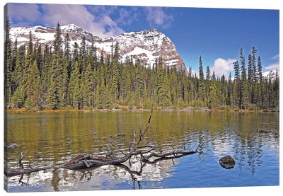 Little Lake O'Hara Canvas Art Print