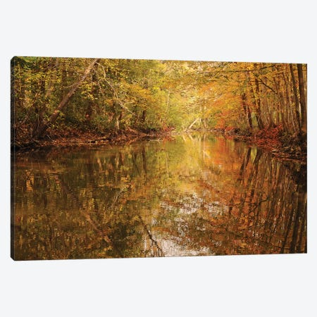 Monet Reflections Canvas Print #BWF202} by Brian Wolf Canvas Art