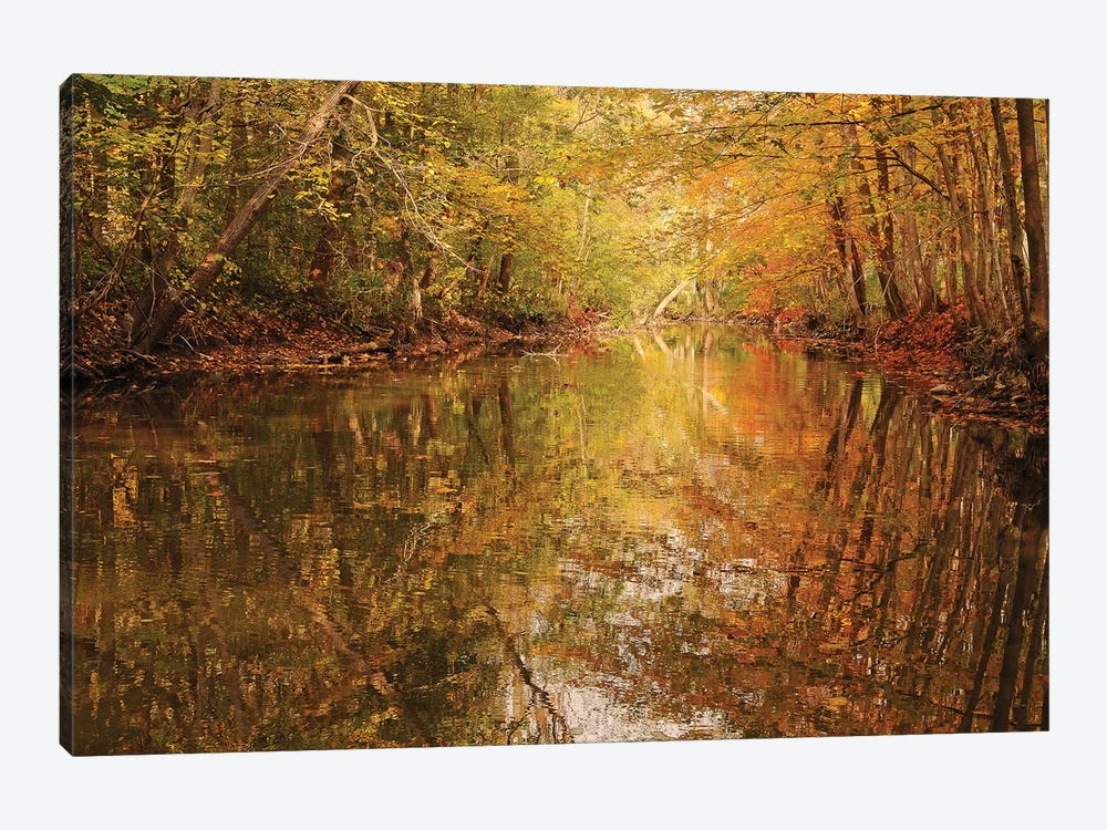 Monet Reflections by Brian Wolf 1-piece Canvas Artwork